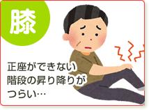 膝(正座ができない・階段の昇り降りがつらい…)